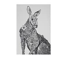 Maxwell & Williams Marini Ferlazzo <b>Tea Towel</b> 50x70cm Kangaroo