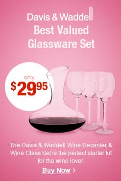 Davis & Waddell Wine Decanter & Wine Glass Set